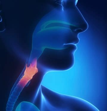 achalasia   risk  esophageal cancer cancer