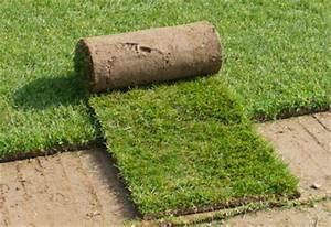 Gazon En Rouleaux : gazon en rouleau les gazons de rouville production de gazons en ile de france pelouse a ~ Farleysfitness.com Idées de Décoration