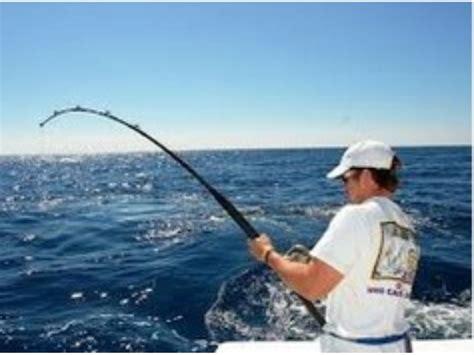 gulf mexico grouper catch trout