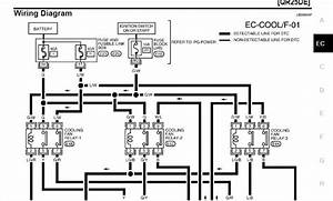 21 Images 2008 Nissan Sentra Radio Wiring Diagram