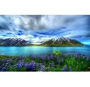 Nature Beautiful Hd Wallpaper Mountain Lake Flowers Sky