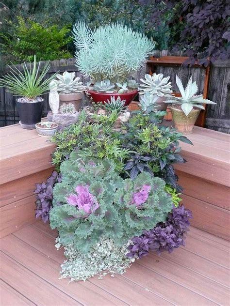Reader Photos! Sheila's Container Gardens In Colorado