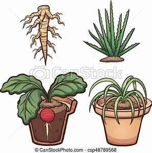 Cartoon plants, roots and flower pot. vector clip art ...