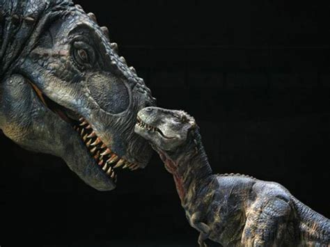 Baby Dinosaur Fossils Found In Dragon's Tomb