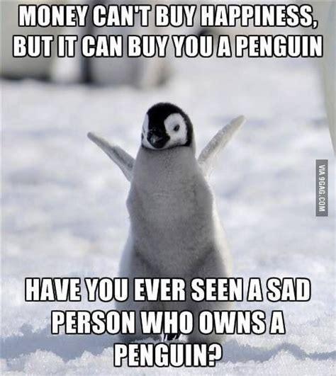 Cute Penguin Meme - 25 best ideas about cute penguins on pinterest baby penguins penguins and emperor penguin