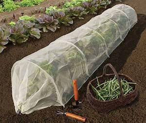 Filet De Protection Jardin : mini serre tunnel de protection insectes 3m jardinet ~ Dallasstarsshop.com Idées de Décoration