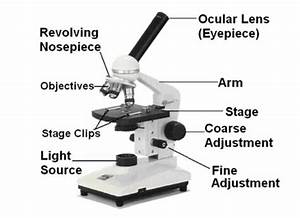 Light Microscope With Labeled Parts