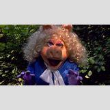 Miss Piggy And Kermit Quotes | 998 x 551 jpeg 473kB