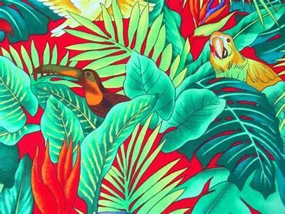 Tropical Hawaiian Parrot Hawaii Pattern Macaw Prints