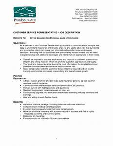 customer service job duties resume resume examples 2017 With customer service representative job description resume