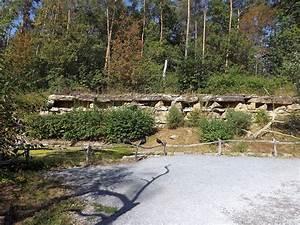 Tierpark Bad Mergentheim : waldrappvoliere wildpark bad mergentheim der beutelwolf blog ~ Watch28wear.com Haus und Dekorationen