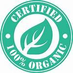 Organic Cotton Certified Fabric Poplin Icon Certificate