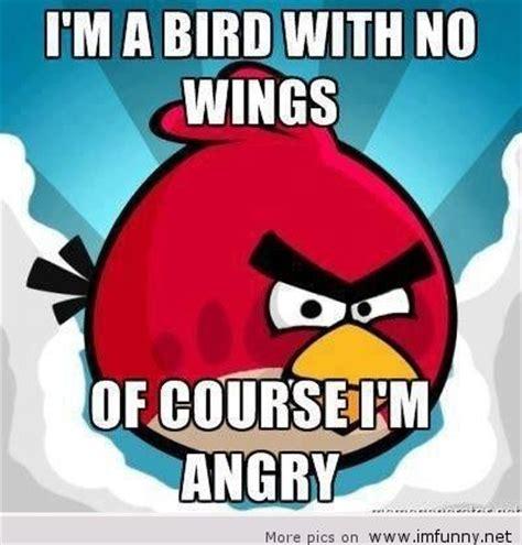 Angry Bird Meme - angry birds