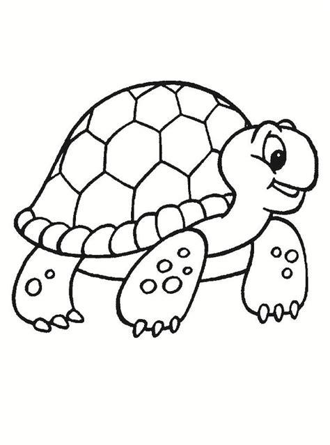 dibujos de tortugas  pintar  colorear dibujos  pintar  imprimir