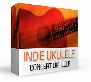 Dream Audio Tools Indie Ukulele Triad Strum Sample Library