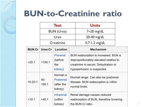 normal range of urine creatinine in mg dl non protein nitrogen npn compounds ppt