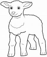 Lamb Coloring Excited Pages Sheet Template sketch template