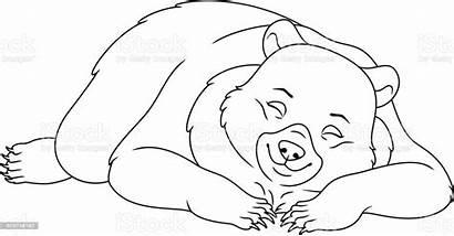 Sleeping Bear Coloring Clipart Hibernating Vector Animal