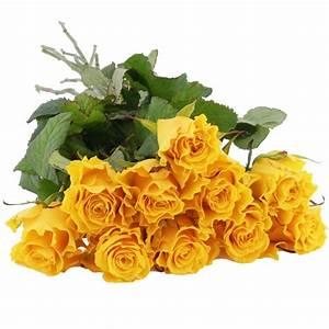 Gelb Rote Rosen Bedeutung : 10 15 oder 20 gelbe rosen im bund alle preiskategorien nach preis schnittblumen ~ Whattoseeinmadrid.com Haus und Dekorationen