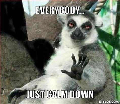 Lemur Meme - how to have a great spring break in ten easy steps momsieblog