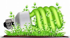 Ser ecológico ahorra dinero