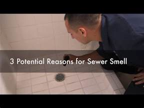 sinks in house smell like sewer bathroom my bathroom smells like sewer innovative on