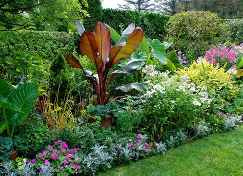 Sun Sun Garden by Garden Berserk Garden Design