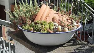 Kübel Bepflanzen Winterhart : eure k bel und t pfe fotos bitte seite 1 terrasse ~ Whattoseeinmadrid.com Haus und Dekorationen