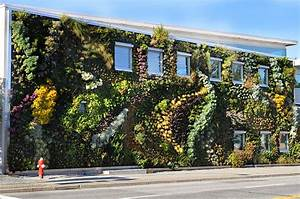 The Semiahmoo Library's Larger Than Life Living Wall ...
