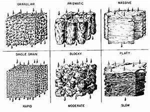 What Is  U201cgood U201d Soil