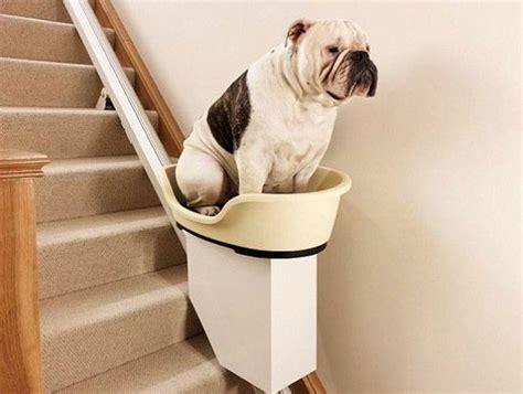 pourquoi avoir un fauteuil monte escalier fonctions et utilités