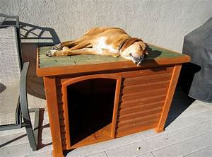 Diy indoor dog kennel interesting ideas for home for How to build a dog house cheap