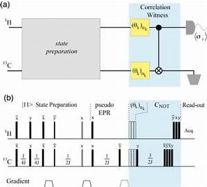 Color Online  Quantum Circuit For The Witness Measurement