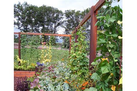 Gronomics Vertical Garden Bestsciaticatreatmentscom