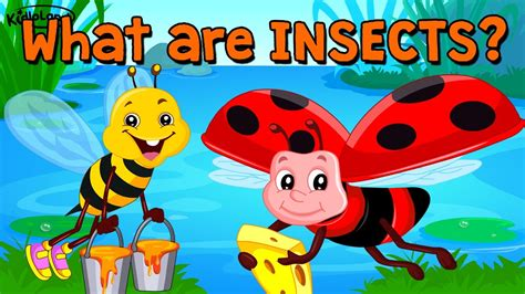 learn about insects song amp activity preschool 348 | maxresdefault
