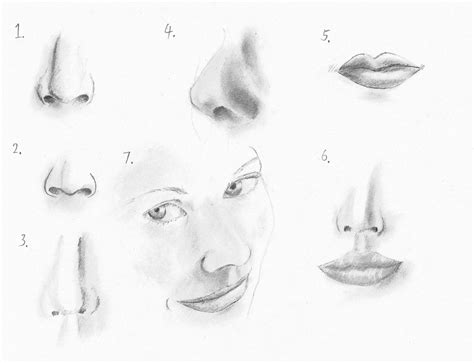 How-to-draw-the-female-nose-and-face-features-9