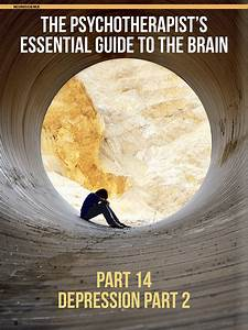 Guide To The Brain Part 14