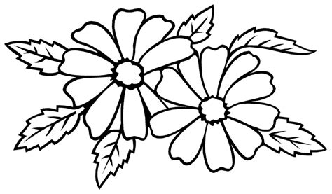 outline pictures of flowers for colouring simple decoration coloring page flower free pages flowers