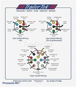 7 Blade Trailer Plug Wiring Diagram  U2013 Volovets Info