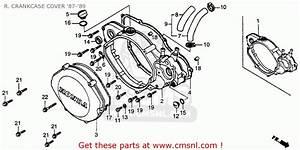 Honda Cr250r Elsinore 1988  J  Usa R  Crankcase Cover  U0026 39 87