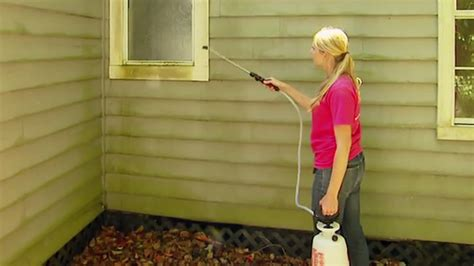 preventing mold  mildew      house