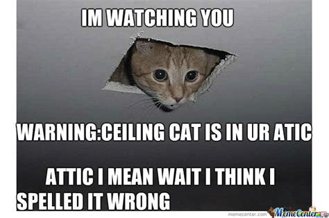 Ceiling Cat Meme Ceiling Cat Is By Mayilana Say Meme Center