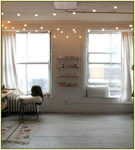 indoor string lights ideas  pinterest plant