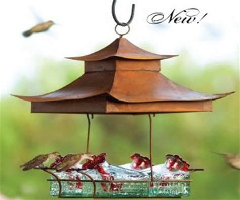 parasol hummingbird feeders hummingbirds