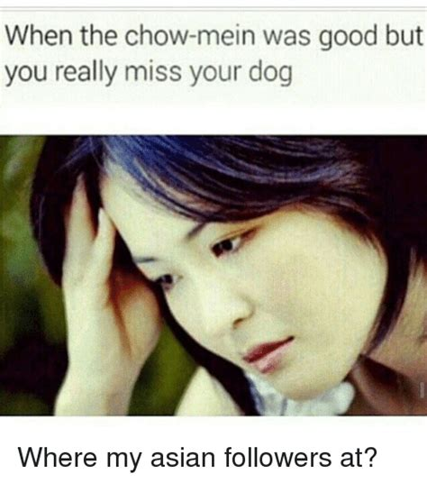 Asian Dog Meme - when the chow mein was good but you really miss your dog where my asian followers at asian