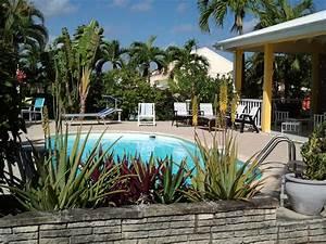 arbre autour piscine cheap lamnagement paysager autour de With transat de piscine design 16 photo jardin et arbres fleurs et plantes deco photo