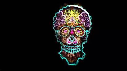 Visuals Edm Skull