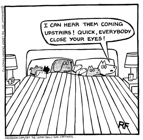 the bed comic the leash the bedroom the leash