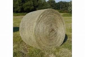 Heu Kaufen Für Pferde : heu rundballen ernte 2014 zu verkaufen in angerm nde pferde kaufen und verkaufen ber private ~ Orissabook.com Haus und Dekorationen