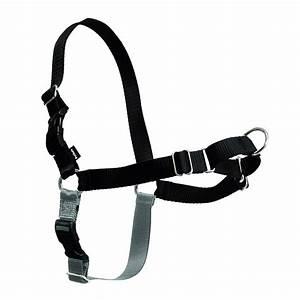Easy Walk Nylon Harness by PetSafe - Black/Si... | BaxterBoo